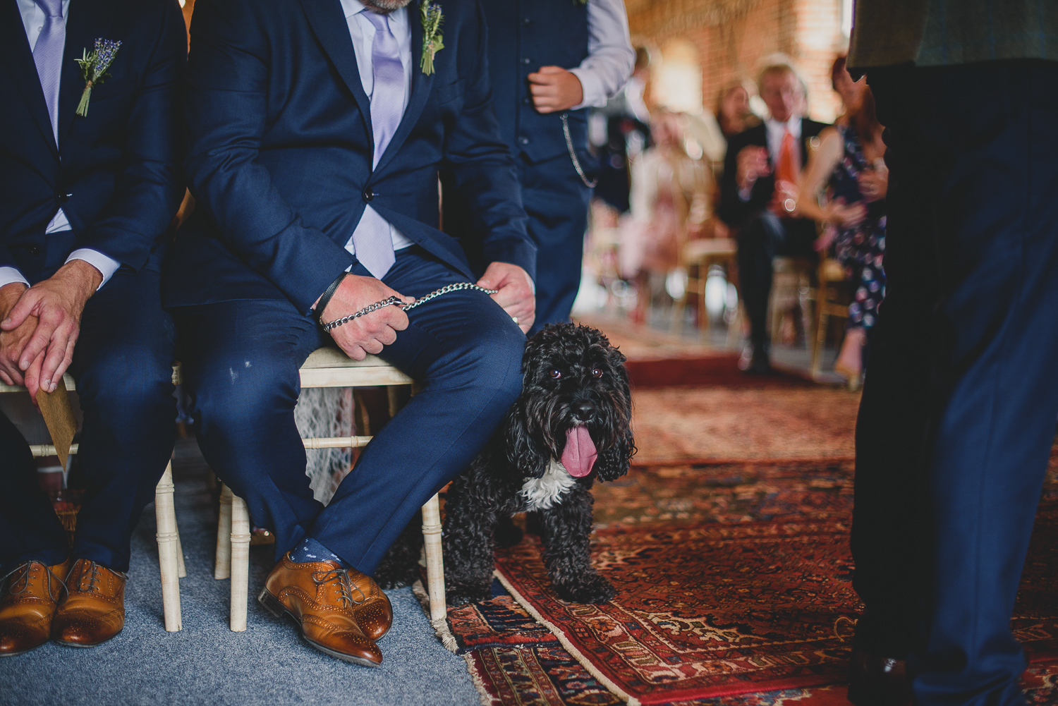 dog delivering rings during ceremony at godwick barn