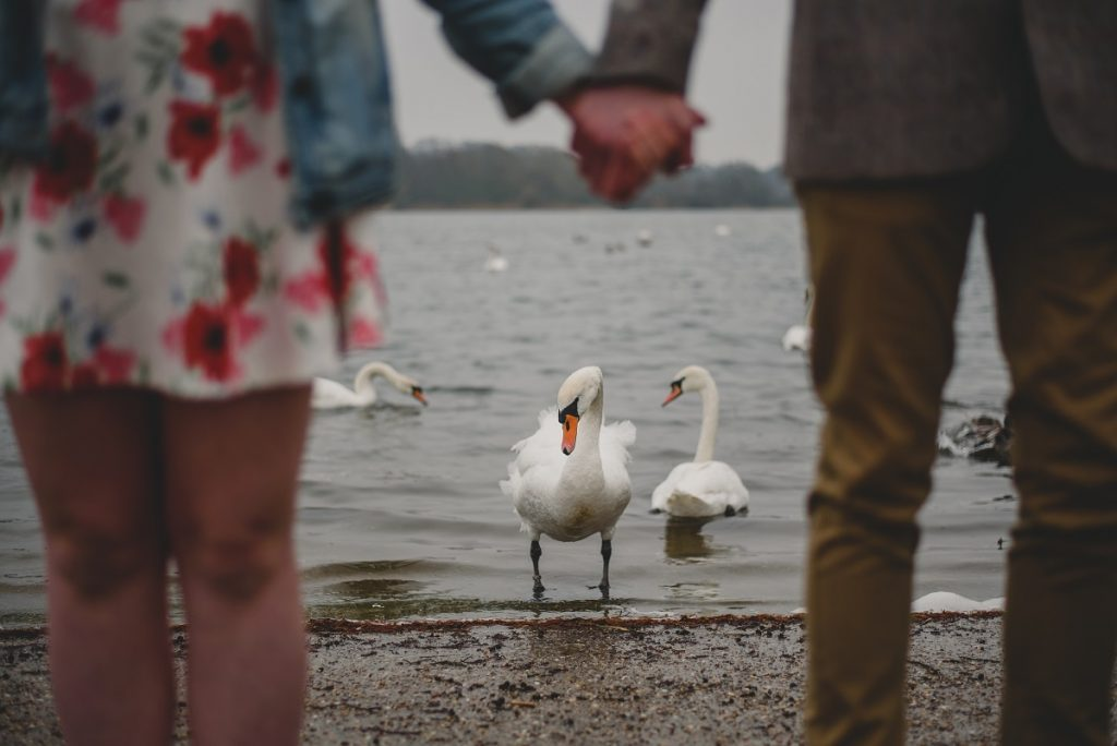 whitlingham broad engagement